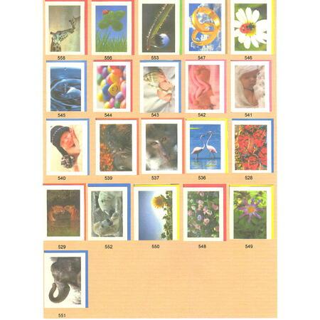 Přání do obálky - Colors of nature - 2
