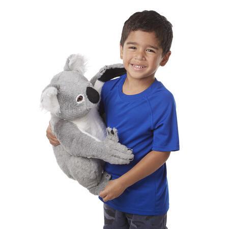 Koala jako živá - 2