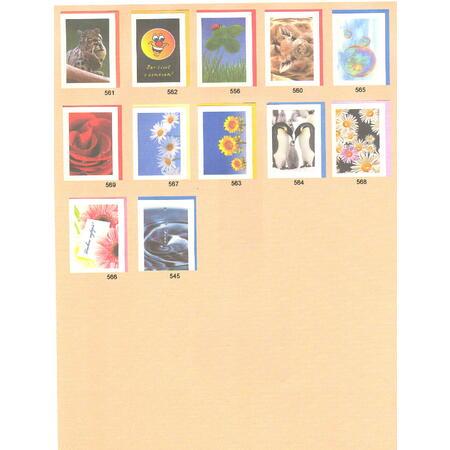 Přání do obálky - Colors of nature - 3