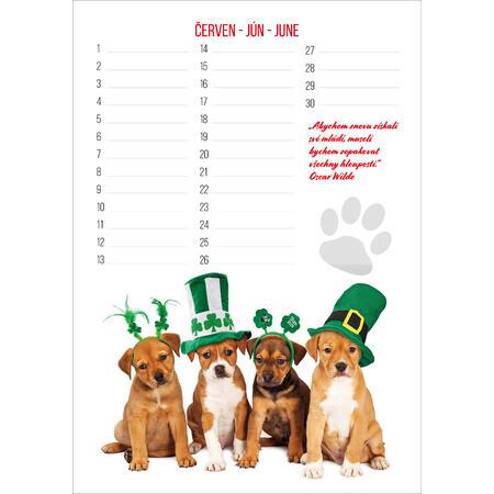 Narozeninový kalendář PETs - 3